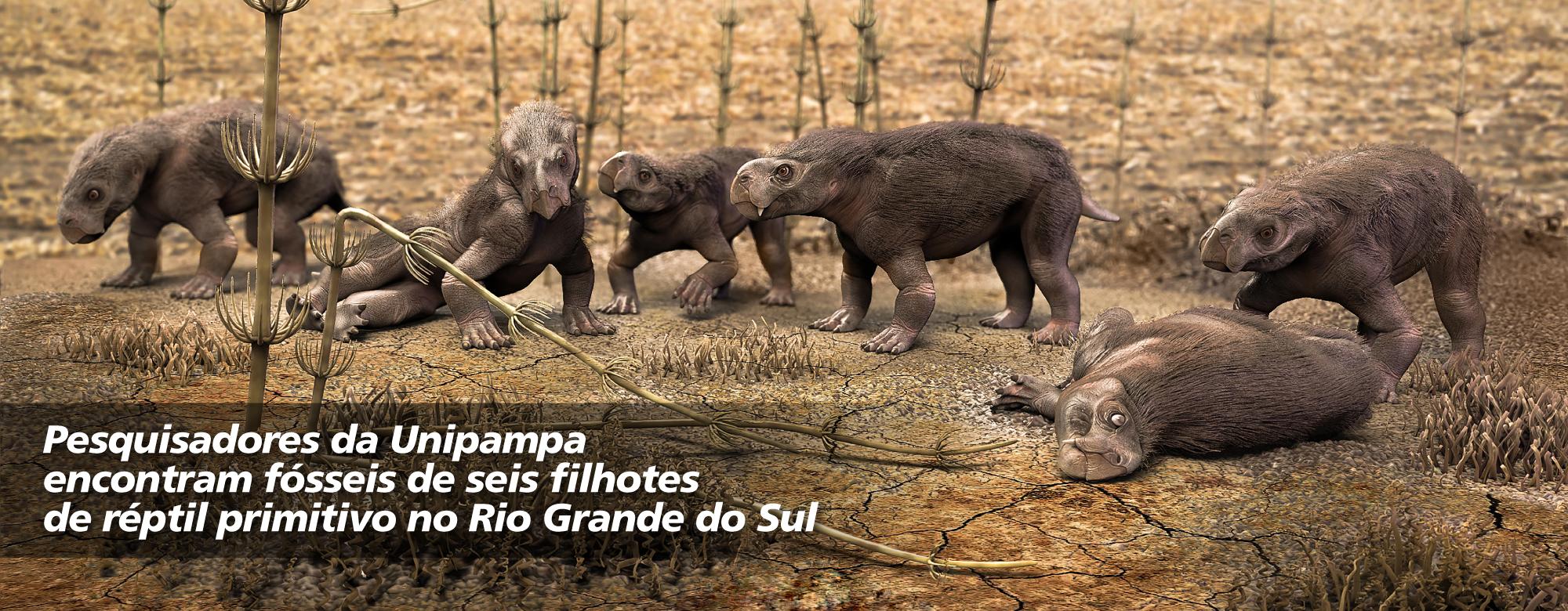 Reconstrução dos animais em vida por Márcio Castro