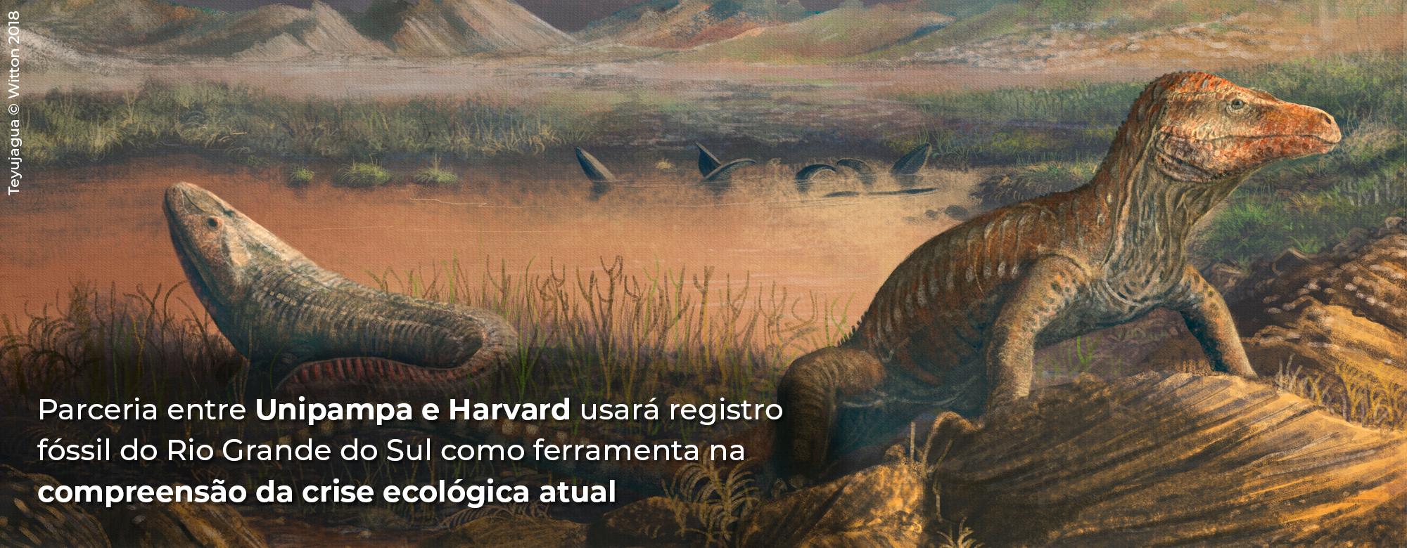 Unipampa e Universidade de Harvard firmam parceria