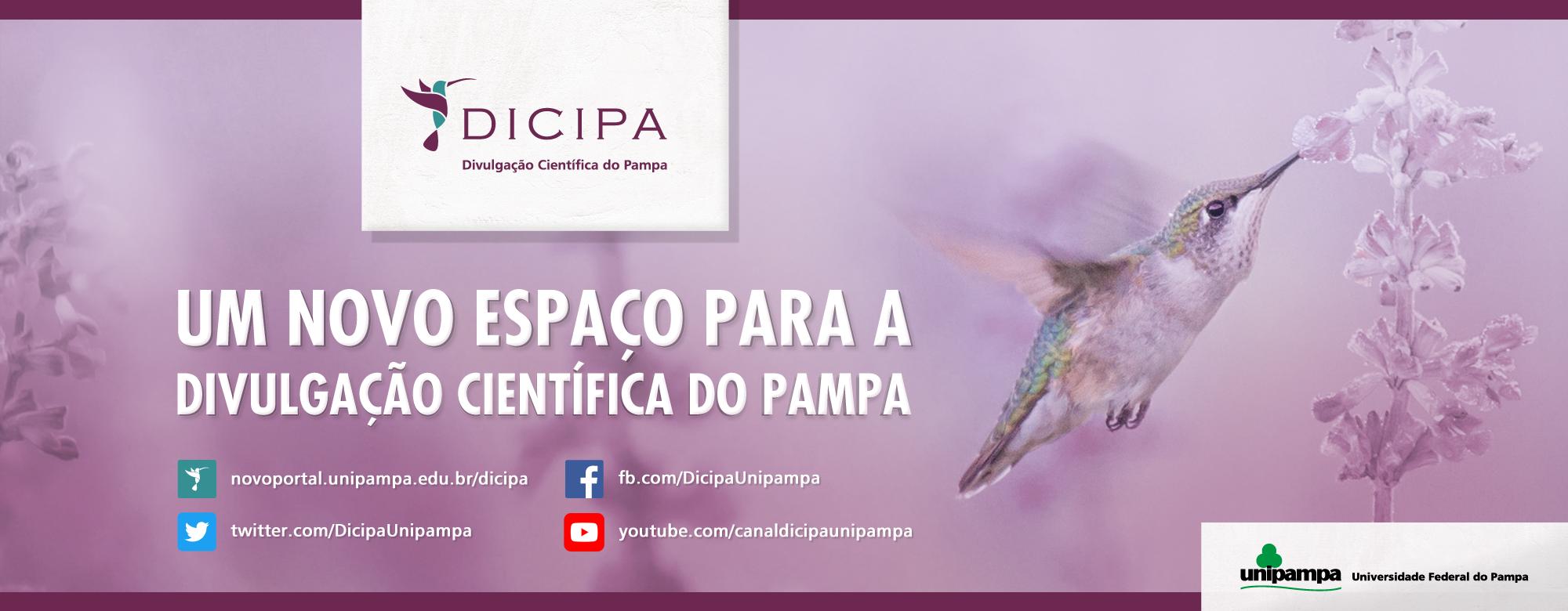 Banner publicitário anunciando o lançamento do portal da Dicipa.